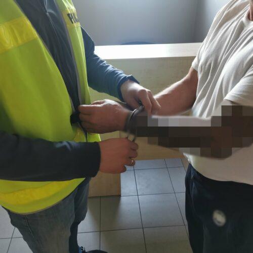 Policjanci zatrzymali 51-latka za skatowanie psa